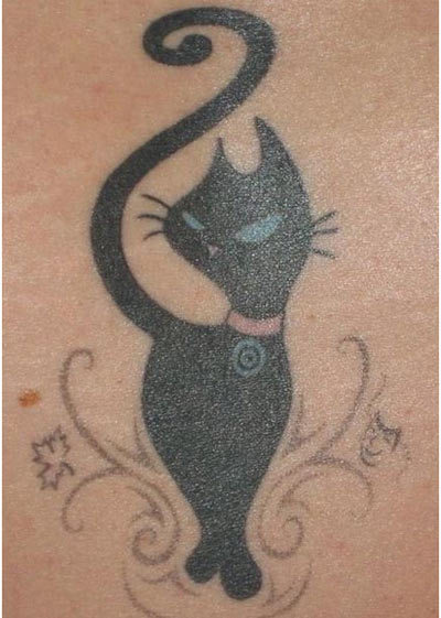 salem the cat tumblr