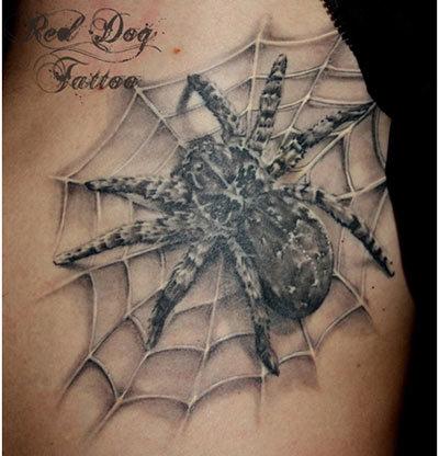 spider inside spider