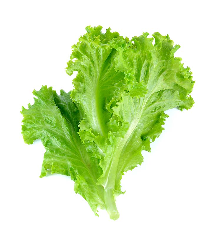 16 Best Benefits Of Lettuce For Skin Hair And Health