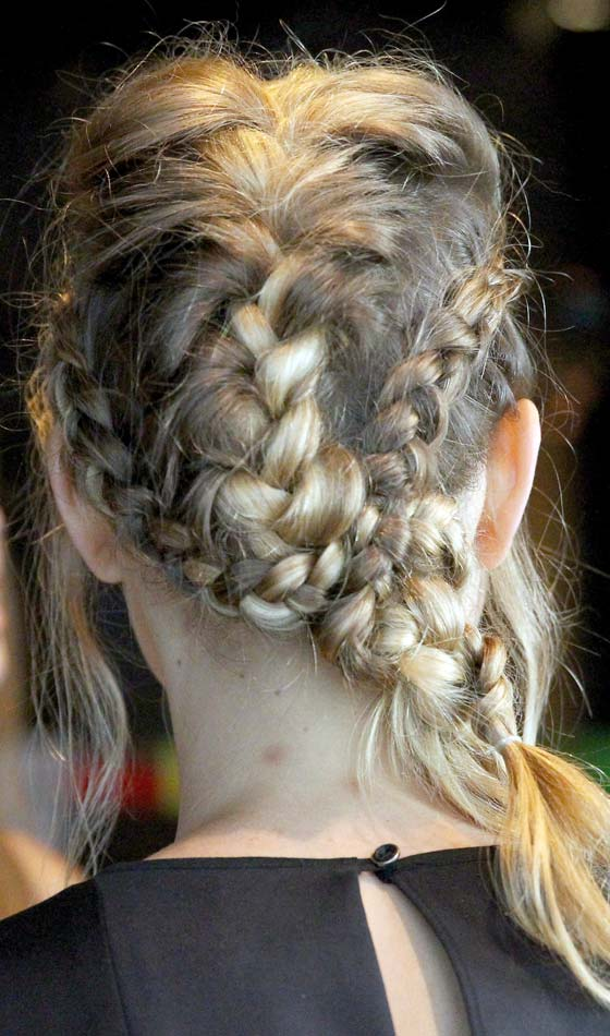 Multiple Braids With Pony