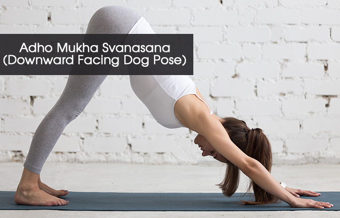 5. Adho Mukha Svanasana (Downward Facing Dog Pose)