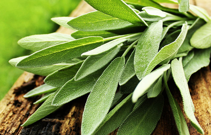 9. Sage Leaves For White Hair