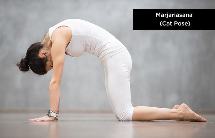 Marjariasana (Cat-Pose) - Yoga for Increasing Height
