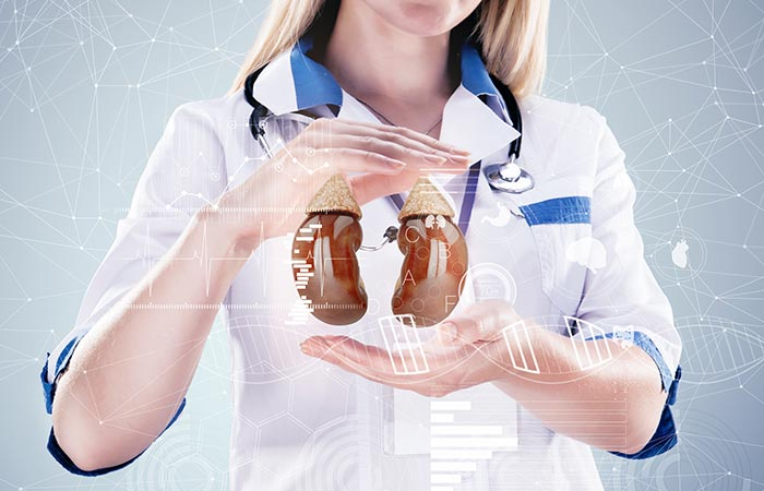 May Heal Kidney Diseases And Improve Kidney Function