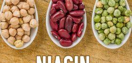 Niacin-Rich-Foods