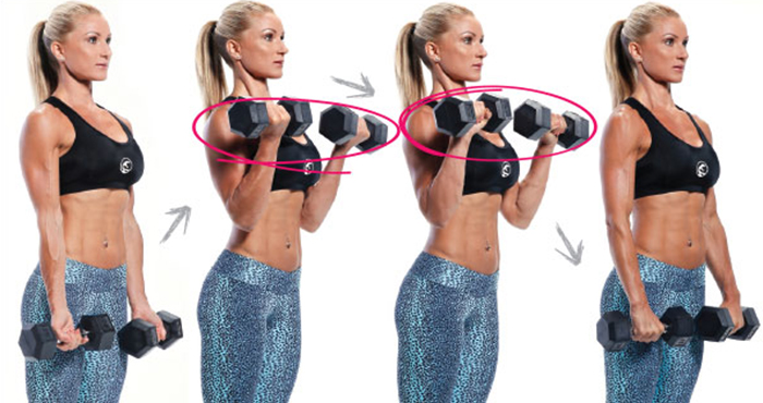 Zottman Curl - Biceps Exercises