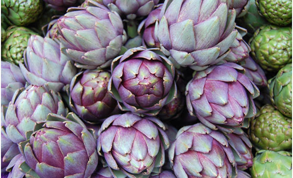 artichoke skin benefits
