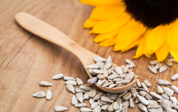 hair benefits of sunflower oil