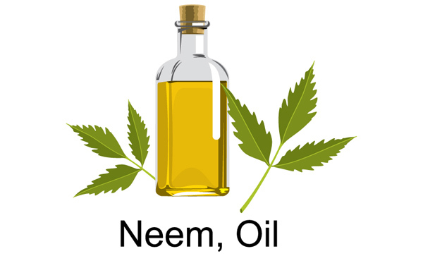 neem oil hair growth