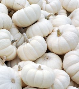 15 Best Benefits Of White Pumpkin For Skin, Hair And Health