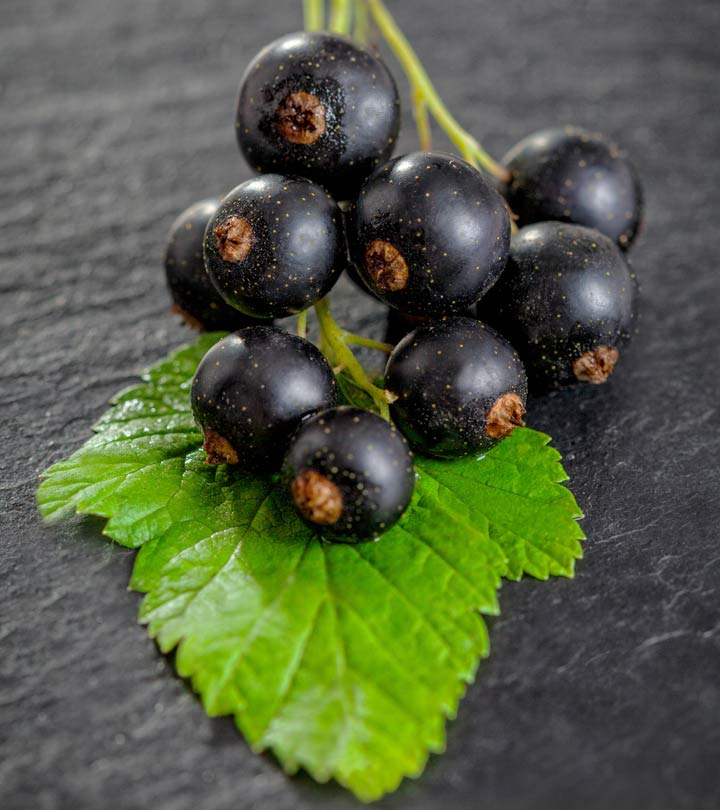 15 Amazing Benefits Of Black Currant For Skin Hair And Health
