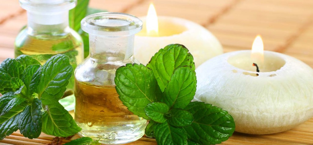 Image result for 10 Practical Uses for Natural, Organic Peppermint Oil