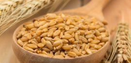 25 Best Benefits Of Barley (Jau) For Health, Skin, And Hair