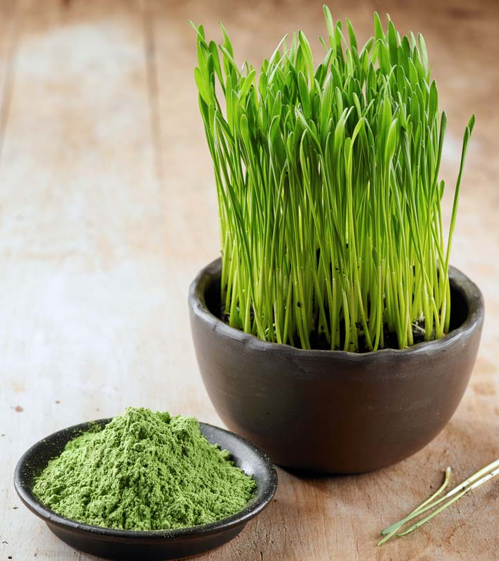 benefits of wheatgrass A daily dose of wheatgrass adds vitamins, minerals and antioxidants to your diet it is also used to relieve certain health conditions, and more research is needed into the many health benefits of wheat grass to find out how it can help.