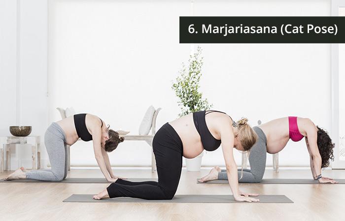 6. Marjariasana (Cat Pose)