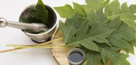 8 Fascinating Uses Of Papaya Leaf Juice For Glowing Skin And Well-being