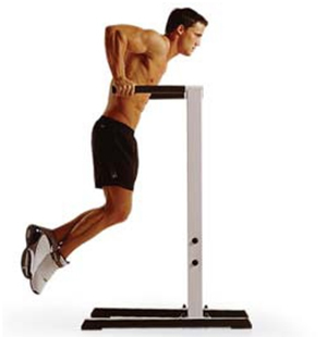 Dips Exercises - Parallel bar dips