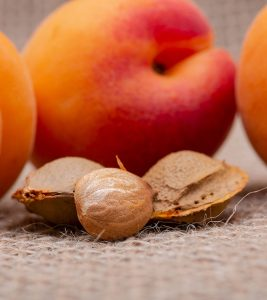 What Does Research Say About Using Apricot Seeds For Cancer?
