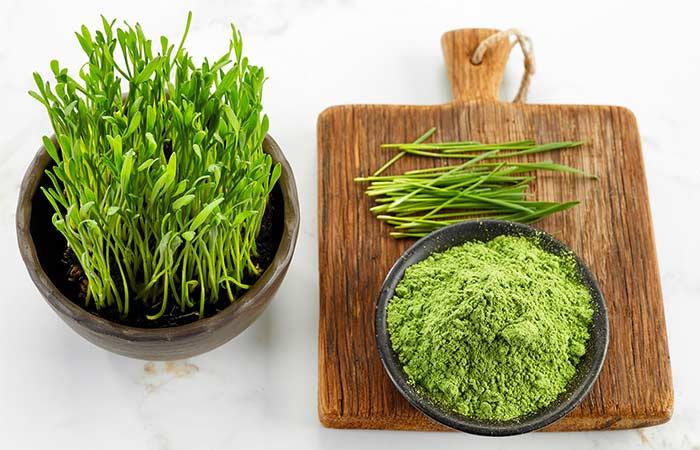 Wheatgrass-Powder-–-A-Brief