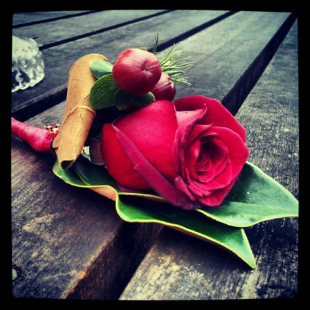 adrenalin rose