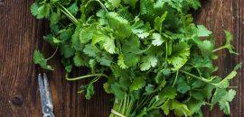 10 Health Benefits Of Cilantro + Recipes And Risks