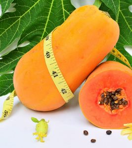 Papaya Diet – How Papaya Aids Weight Loss