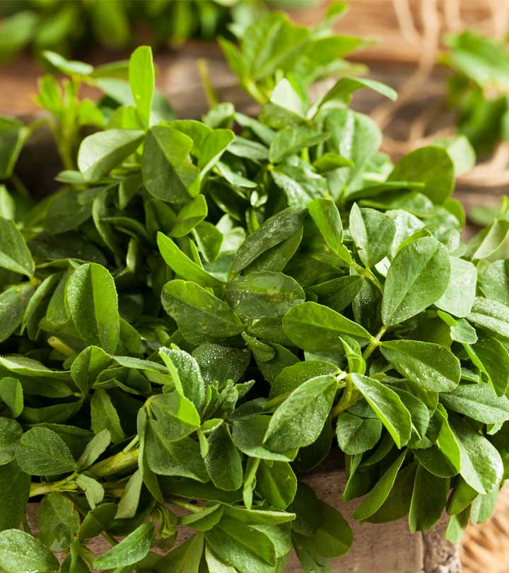 6 Best Benefits Of Fenugreek Leaves For Skin, Hair And Health
