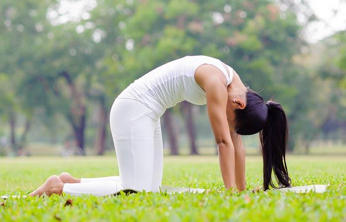 Marjariasana - Yoga Poses For Beginners