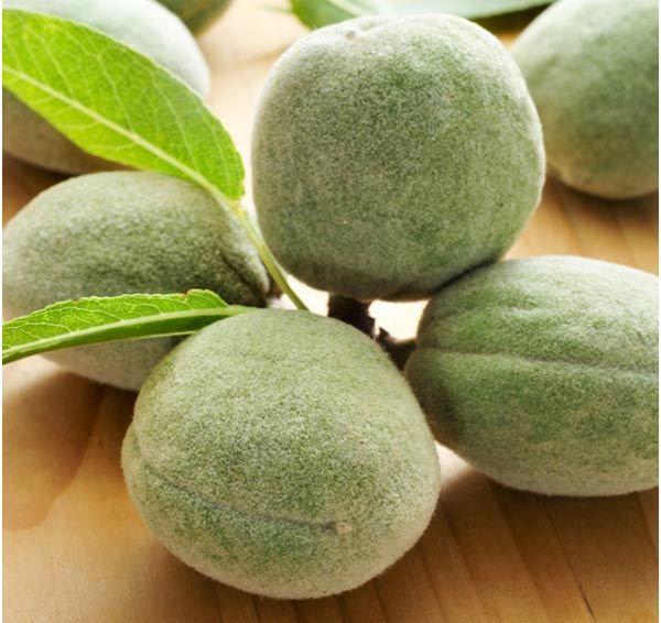 benefits of green almonds