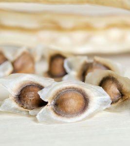 Benefits-Of-Moringa-Seeds-For-Health,-Skin,-And-Hair