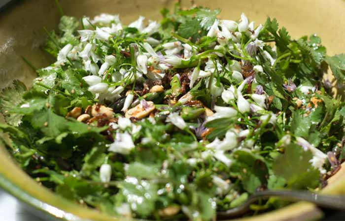 Cilantro Shallot Green Salad Refreshing And Healthy