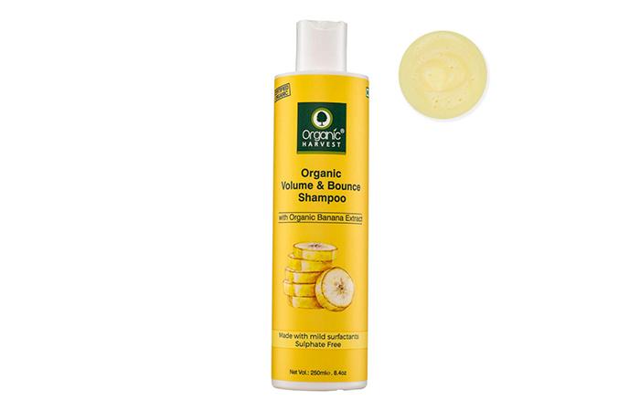 Organic Harvest Organic Volume & Bounce Shampoo