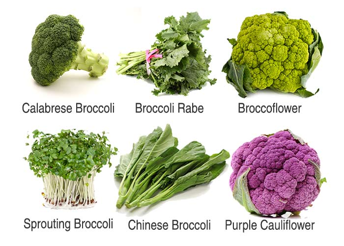 Broccoli Benefits