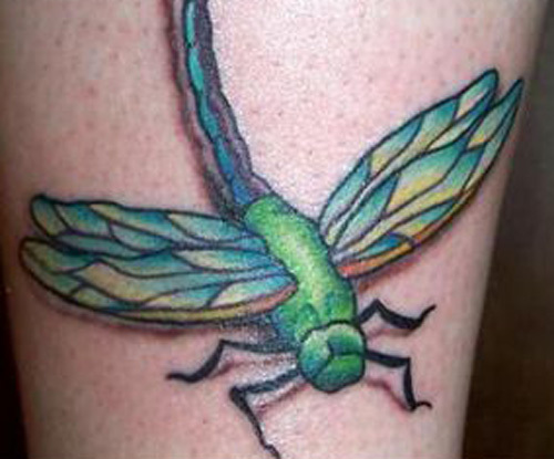 green dragonfly tattoo