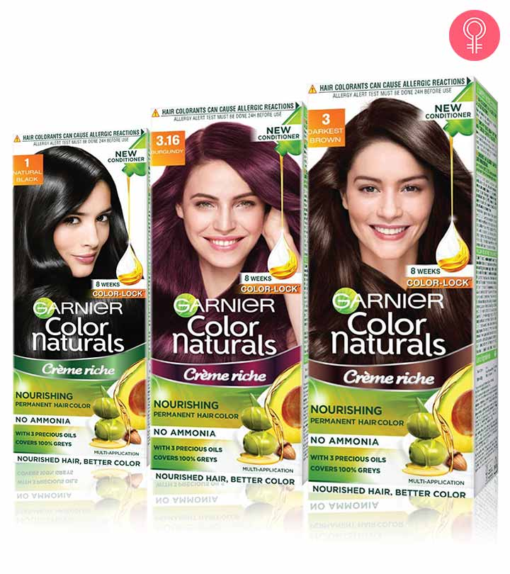 Garnier Hair Colour Shades Chart In India Color Best Of Ultra Dark