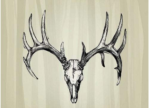 best deer skull tattoos