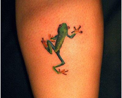 frog climbing guide