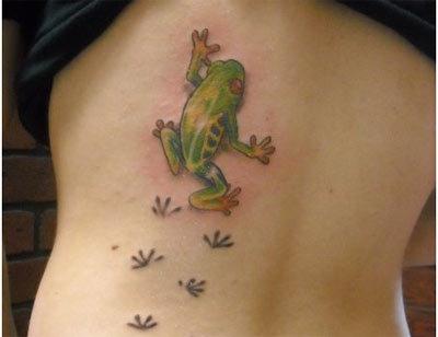 frog designs