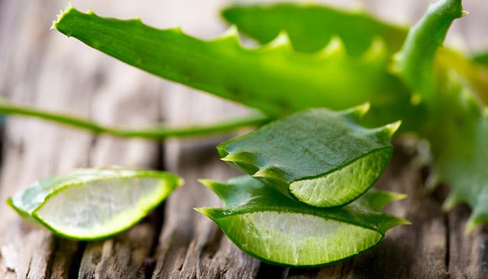 10. Aloe Vera For Puffy Eyes
