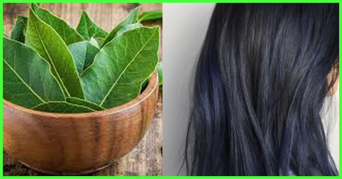 Bay Leaf Potential Health Benefits Nutrition And Side Effects