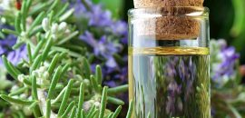 551-15 Best Benefits Of Rosemary Oil For Skin And Health-shutterstock 132291878