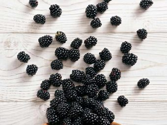 Bonkers Over Blackberries Benefits, Tips, And Trivia