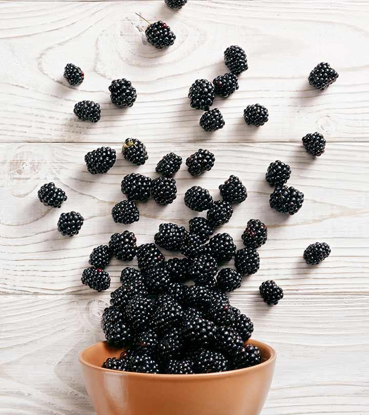 Bonkers Over Blackberries: Benefits, Tips, And Trivia