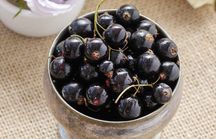 European-Black-Currants