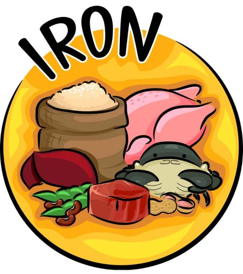 Top 15 Iron-Rich Foods + The Important Benefits Of Iron