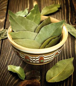 Top 5 Bay Leaf Benefits You Should Know Today + Side Effects