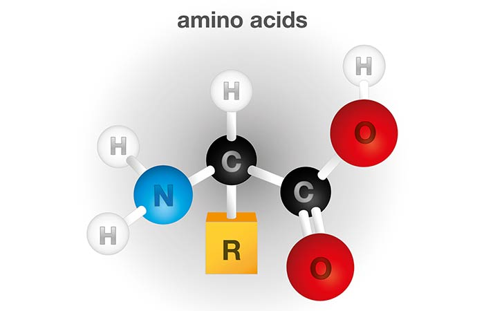 Amino Acids For Hair Growth - Amino Acids