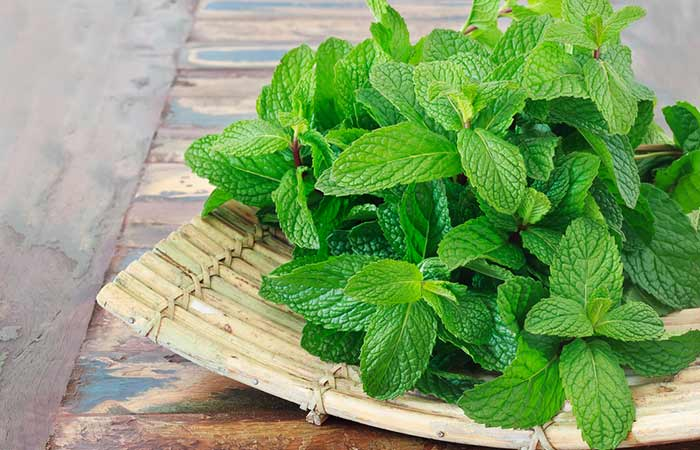 Get Rid Of Acne On Your Chin - Mint Leaves