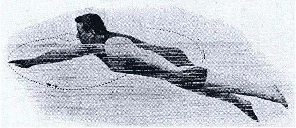 trudgen-crawl-swimming
