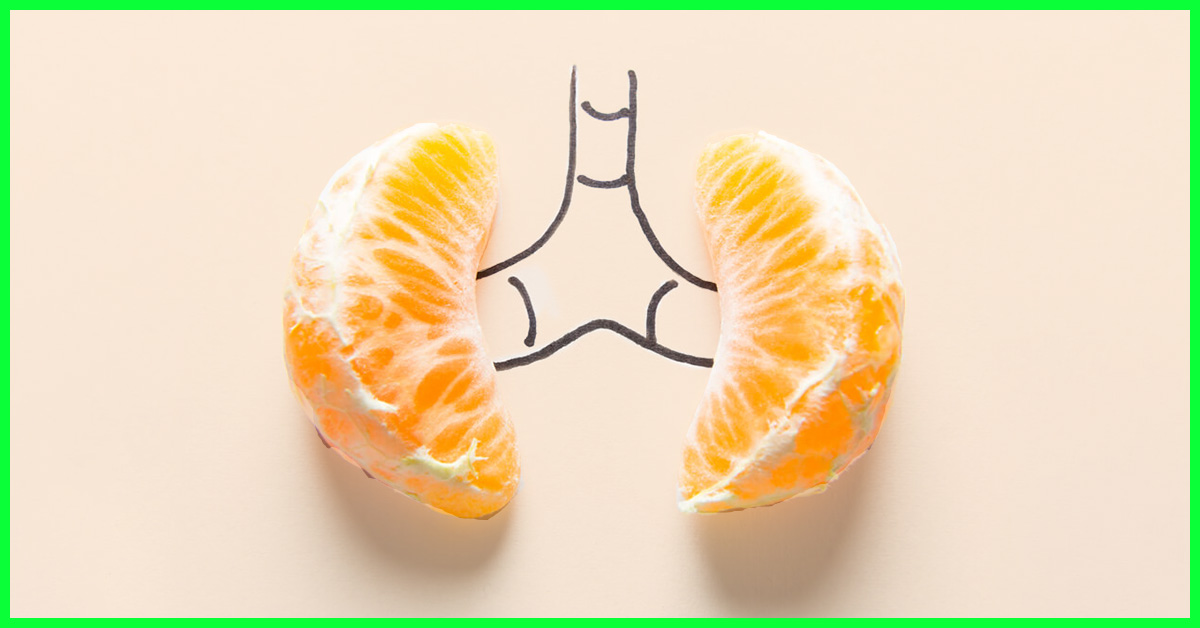 20 Best Foods For A Healthy Kidney